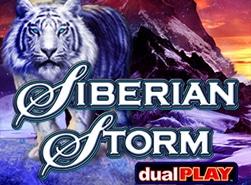 siberian-storm-dual-play-small