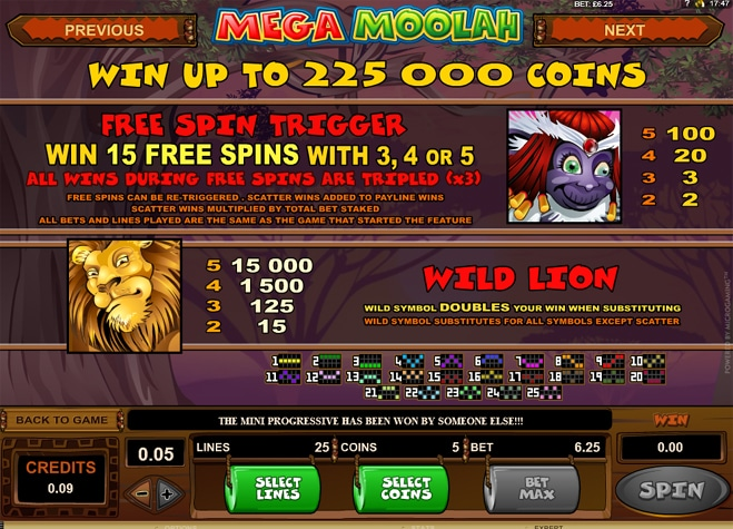 Mega Moolah Slot game rules