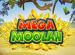 mega-moolah-slot-page